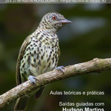 Veja como foi o Workshop  Fotografando aves na Mata atlântica de  25 a 27 de Maio 2018