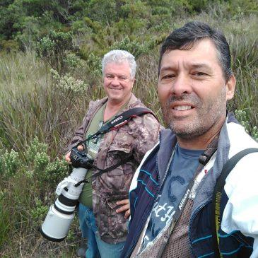 Entre os dias 22 a 24 de Maio mostrei algumas aves da Região do Parque Nacional do Itatiaia ao amigo Henrique Moreira de Brasília DF.