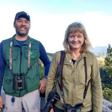 Hoje dia 29 de maio mostrei algumas aves do Parque Nacional do Itatiaia a observadora de aves  Pamela.