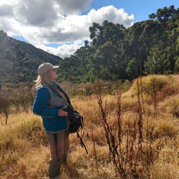 31 de maio de 2018 Levei a Pamela para conhecer a parte alta do Parque Nacional do Itatiaia e ver as aves de altitude.