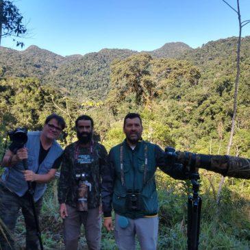 10 a 13 de Julho. Expedição por cidades do Sul do estado de São Paulo. Mostrando novas aves aos amigos Ernani Oliveira e Alexandre Vidal . . .
