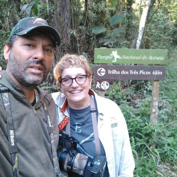 14 a 16 de agosto de 2018. Mostrando as aves da região do Parque Nacional do Itatiaia a amiga brasileira/americana Geruza Paiva.