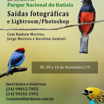 Workshop - Fotografia de aves e edição de imagens. 8 a 10 de novembro 2019