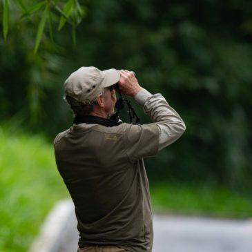 07 a 08 de Fevereiro de 2020. Expedição para observar aves pela região do Parque Nacional do Itatiaia com o francês Christian Hollville.