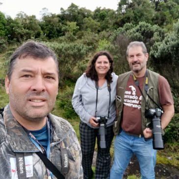 02 a 04 de Março de 2020. Expedição para fotografia de aves pela região do Parque Nacional do Itatiaia com o casal Paulo Sérgio e Luciana.
