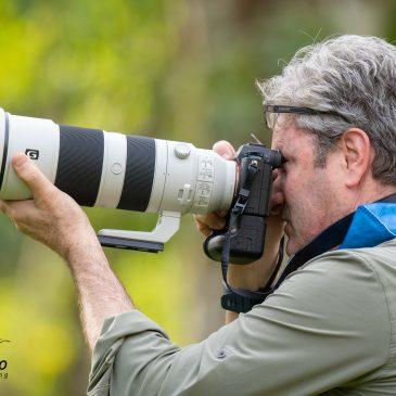 23 a 25 de Junho de 2020. Expedição para fotografia de aves na Trilha dos Tucanos com Geraldo Starling