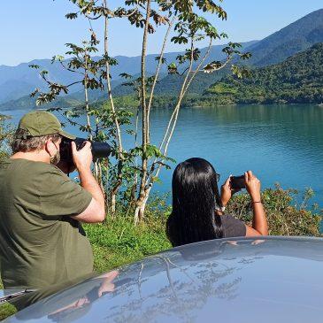 30 e 31 de Agosto de 2020 - Expedição para observação e fotografia de aves pelas cidades de Paraty RJ e Angra dos Reis RJ com o casal Johannes e Ana Cláudia.