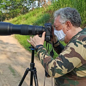 30 a 01 de Outubro de 2020 - Expedição para observação e fotografia de aves pelo Parque Nacional do Itatiaia, Serrinha do Alambari, Penedo e Serra da Bocaina com José Luiz Bevilácqua.