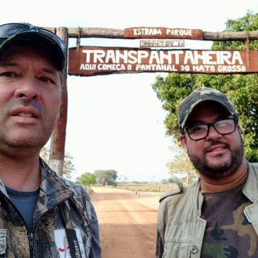 20 a 23 de Outubro de 2020 - Expedição para fotografia de aves pelo Pantanal de Mato Grosso e Chapada dos Guimarães com o fotógrafo Thiago Mafra