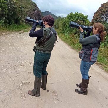 28/01 a 01/02 de 2021 - Expedição para fotografia de aves pela região do Parque Nacional do Itatiaia com as amigas Celina e Edna.