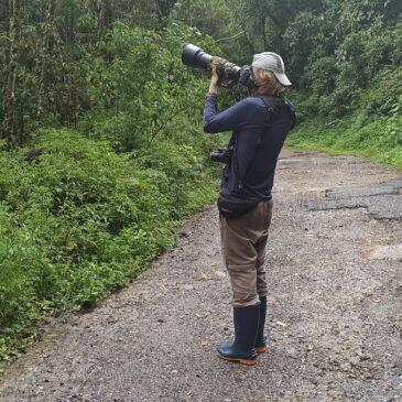 17 e 18 de Dezembro de 2020 - Expedição para fotografia de aves pelo Parque Nacional do Itatiaia com o biólogo e fotógrafo  Diego Hoffmann.