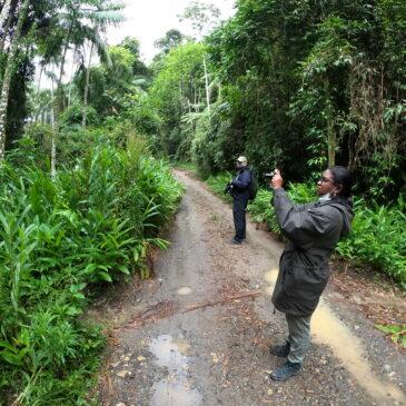 14 a 16 de Fevereiro de 2021 - Expedição para observação de aves pela região do Parque Nacional do Itatiaia com o casal Yohannes e Ana.