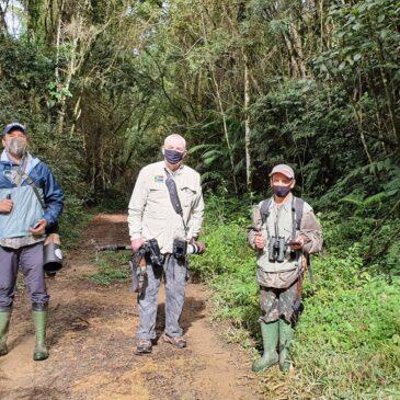 17 a 24 de Junho de 2021- Expedição para fotografia de aves pela Trilha dos Tucanos e Parque Estadual Intervales com o Casal Osmar Lima e Martha.