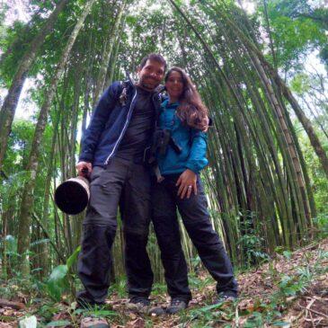 04 e 05 de Junho de 2021 - Expedição para observação e fotografia de aves pelo Parque Nacional do Itatiaia com o casal Ricardo e Eliza.