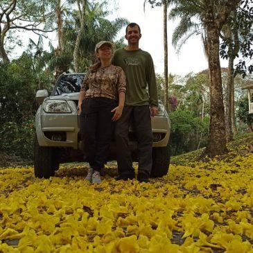 09 de Setembro de 2021 - Expedição para fotografia de aves pelo Parque Nacional do Itatiaia e Serra da Bocaina com o casal Felipe e Mel Simas.